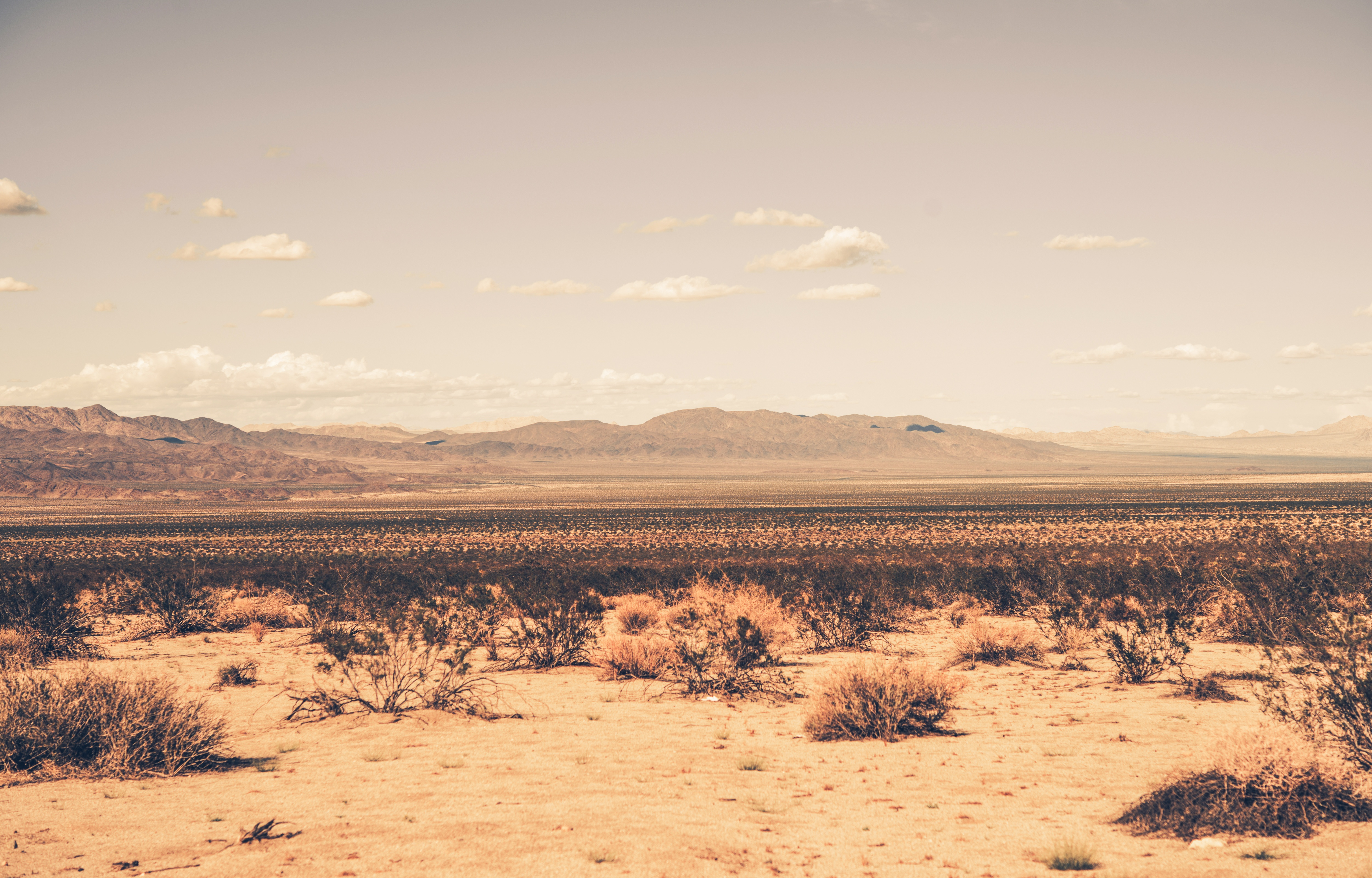 The future for the land that was going to be used for the Palen solar project. Image courtesy of DollarPhotoClub.com